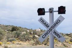 Εθνικό πάρκο Cibola που διασχίζει για το τραμ Στοκ Εικόνες