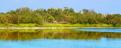 Εθνικό πάρκο Everglades λιμνών Eco Στοκ εικόνες με δικαίωμα ελεύθερης χρήσης