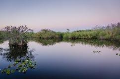 Εθνικό πάρκο Everglades Στοκ φωτογραφία με δικαίωμα ελεύθερης χρήσης