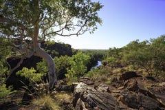 Εθνικό πάρκο 3 Hill χορτοταπήτων Στοκ φωτογραφία με δικαίωμα ελεύθερης χρήσης
