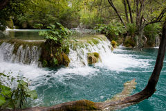 Εθνικό πάρκο Jezera Plitvicka Στοκ φωτογραφίες με δικαίωμα ελεύθερης χρήσης