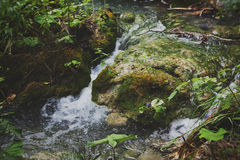 Εθνικό πάρκο Jezera Plitvicka Στοκ εικόνα με δικαίωμα ελεύθερης χρήσης