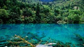εθνικό πάρκο jiuzhaigou της Κίνας sicuan Στοκ Φωτογραφία