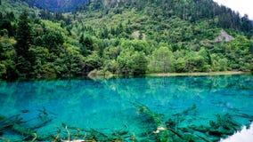 εθνικό πάρκο jiuzhaigou της Κίνας sicuan Στοκ Εικόνες