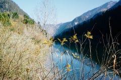 Εθνικό πάρκο Jiuzhaigou Στοκ Φωτογραφία