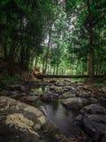 Εθνικό πάρκο Khao nam khang Στοκ εικόνα με δικαίωμα ελεύθερης χρήσης