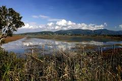 εθνικό πάρκο maremma στοκ φωτογραφίες