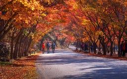 Εθνικό πάρκο Naejangsan στην εποχή φθινοπώρου, Νότια Κορέα Στοκ φωτογραφία με δικαίωμα ελεύθερης χρήσης