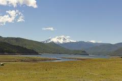Εθνικό πάρκο Nalcas, Χιλή στοκ εικόνες