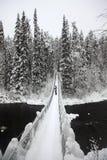 Εθνικό πάρκο Oulanka γεφυρών για πεζούς. Φινλανδία. στοκ φωτογραφίες με δικαίωμα ελεύθερης χρήσης