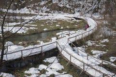 Εθνικό πάρκο Plitvicka Jezera Στοκ φωτογραφία με δικαίωμα ελεύθερης χρήσης