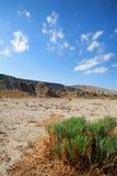Εθνικό πάρκο Qobustan στο Αζερμπαϊτζάν Στοκ Φωτογραφίες