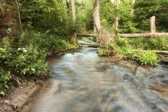 Εθνικό πάρκο Roztochia Roztocze Καταρράκτες στον ποταμό Sopot Στοκ φωτογραφία με δικαίωμα ελεύθερης χρήσης