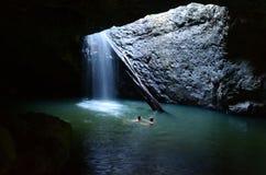 Εθνικό πάρκο Springbrook - Queensland Αυστραλία Στοκ Φωτογραφίες