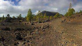 Εθνικό πάρκο Teide πεζοπορία tenerife Στοκ Εικόνα