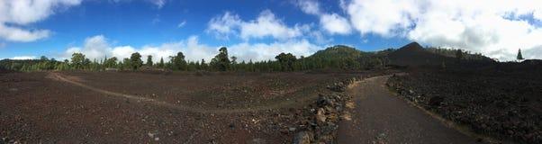 Εθνικό πάρκο Teide πεζοπορία tenerife Στοκ εικόνα με δικαίωμα ελεύθερης χρήσης