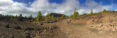 Εθνικό πάρκο Teide πεζοπορία tenerife Στοκ φωτογραφία με δικαίωμα ελεύθερης χρήσης
