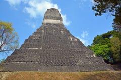 Εθνικό πάρκο Tikal Στοκ Φωτογραφία