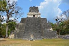 Εθνικό πάρκο Tikal Στοκ φωτογραφίες με δικαίωμα ελεύθερης χρήσης