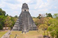 Εθνικό πάρκο Tikal Στοκ Εικόνες