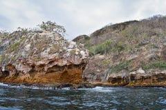 Εθνικό πάρκο Vallarta αψίδων υποθαλάσσιο ή θαλάσσιο πάρκο Las Peñas Los Arcos ή οι βράχοι, με μια μεγάλη ποικιλία του includi θα Στοκ Φωτογραφία