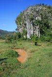 εθνικό πάρκο vinales στοκ φωτογραφίες