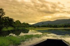Εθνικό πάρκο Yai Khao, Ταϊλάνδη Στοκ εικόνα με δικαίωμα ελεύθερης χρήσης