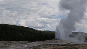 Εθνικό πάρκο Yellowstone: Παλαιά πιστή έκρηξη απόθεμα βίντεο