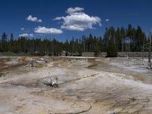 Εθνικό πάρκο Yellowstone στις ΗΠΑ Στοκ εικόνες με δικαίωμα ελεύθερης χρήσης