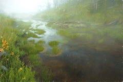 Εθνικό πάρκο Yellowstone διανυσματική απεικόνιση