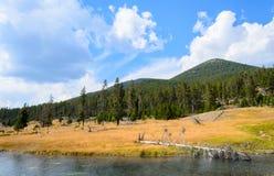 Εθνικό πάρκο Yellowstone στοκ φωτογραφίες