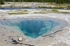 Εθνικό πάρκο yellowstone Waterhole Στοκ εικόνα με δικαίωμα ελεύθερης χρήσης