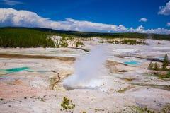 Εθνικό πάρκο Yellowstone Wyoming ΗΠΑ geysers Στοκ Εικόνα