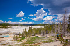 Εθνικό πάρκο Yellowstone Wyoming ΗΠΑ geysers Στοκ Φωτογραφία