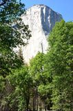 Εθνικό πάρκο Yosemite, Νεβάδα στη Βόρεια Αμερική Στοκ φωτογραφία με δικαίωμα ελεύθερης χρήσης