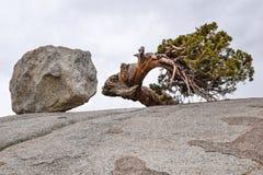 Εθνικό πάρκο Yosemite, σημείο Olmsted, βράχος, που στρίβεται Στοκ Εικόνες