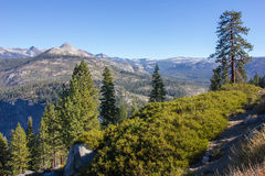 Εθνικό πάρκο Yosemite Στοκ Φωτογραφίες