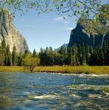 Εθνικό πάρκο Yosemite Στοκ Φωτογραφία