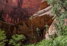 Εθνικό πάρκο 16 Zion φαραγγιών Kolob Στοκ εικόνα με δικαίωμα ελεύθερης χρήσης