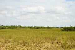 Εθνικό τοπίο πάρκων Everglades στοκ εικόνες