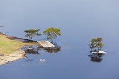 Εθνικό τοπίο πάρκων Nakuru, Κένυα Στοκ φωτογραφία με δικαίωμα ελεύθερης χρήσης