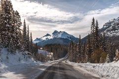 Εθνικό φθινόπωρο πάρκων Banff στοκ εικόνες με δικαίωμα ελεύθερης χρήσης