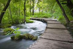 εθνικό plitvicka πάρκων jezera Στοκ Εικόνες