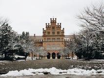 Εθνικό univercity Chernivtsi Στοκ εικόνες με δικαίωμα ελεύθερης χρήσης