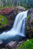 εθνικό yellowstone πάρκων αλκών πτώσεων Στοκ φωτογραφία με δικαίωμα ελεύθερης χρήσης