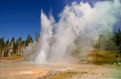 εθνικό yellowstone πάρκων Στοκ Εικόνες