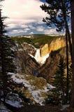 εθνικό yellowstone πάρκων Στοκ Εικόνα