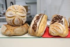 Ειδικότητα ψωμιού Στοκ Εικόνες