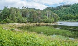 Ειδυλλιακή άποψη κοντά στο χωριό Plockton στο Χάιλαντς της Σκωτίας στο νομό του Ross και Cromarty Στοκ Φωτογραφία