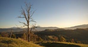 Ειδυλλιακή άποψη των Καρπάθιων βουνών στοκ φωτογραφίες